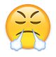 Emoji mit Dampf aus der Nase